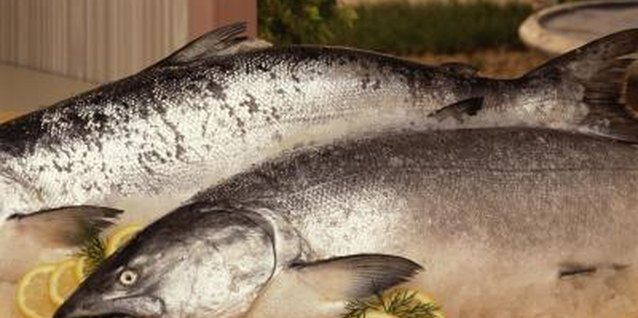 Whole salmon take longer to roast than fillets or steaks.