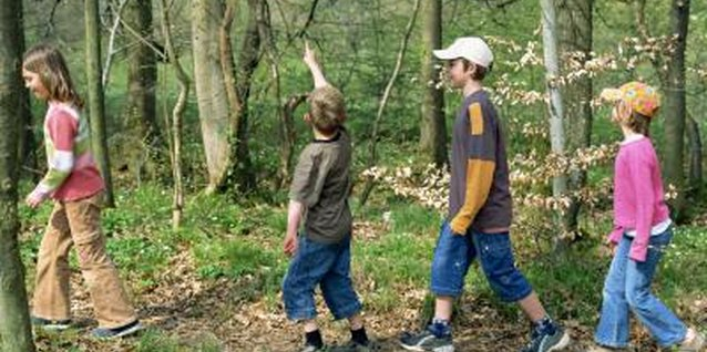 Use games and activities to teach children about the lives of mountain men.