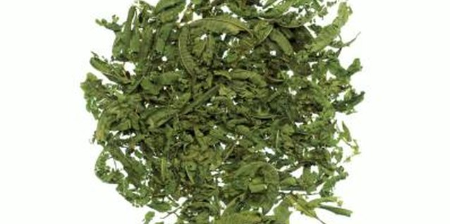 Crushed, dried lemon verbena leaves hold their scent in potpourri.