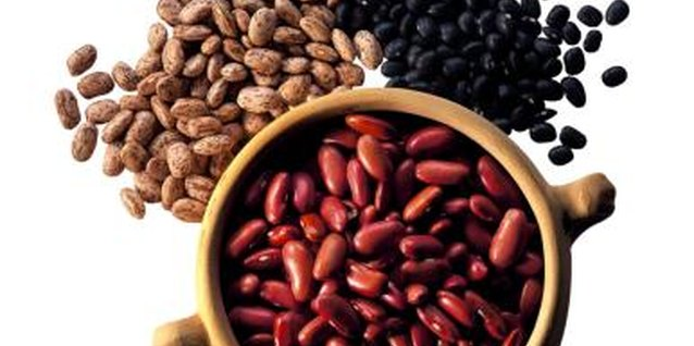 Alternative Sources of Protein for a Vegetarian