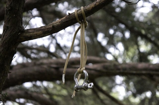 Secure larger shackle to upper branch.