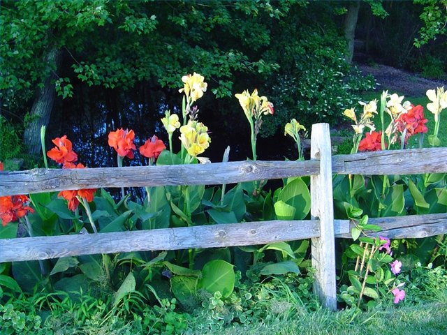 Create a positive impact on a border fence
