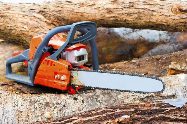 Chain saw lying on fallen branches