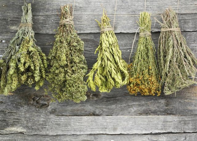 Dried herbs hanging on a wood surface.
