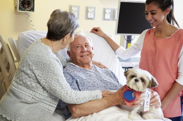 A therapy dog visits hospital residents.