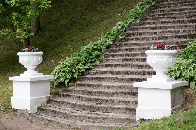 Ground cover plants are an attractive edging next to old stone steps.