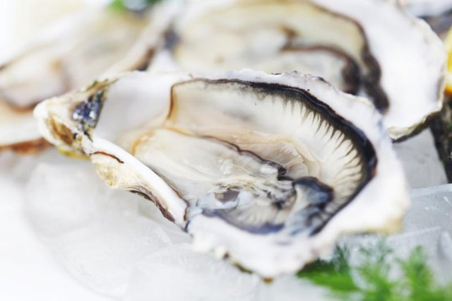 Close-up of oysters on ice.