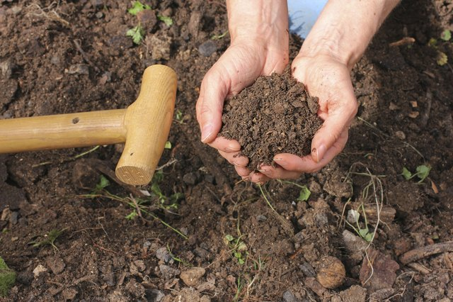 You can often tell soil type by holding it.