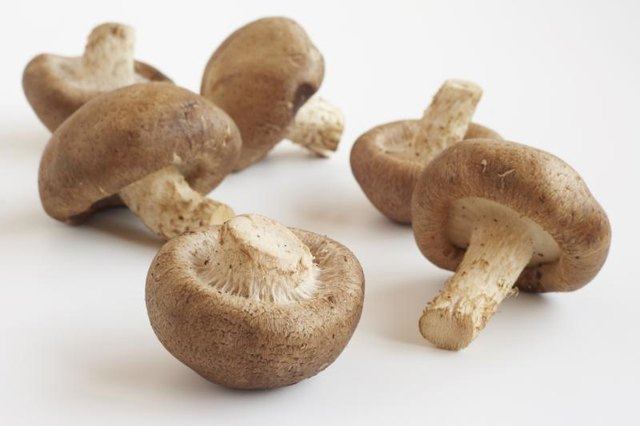 Mushrooms are a flavorful addition to sauces, stir-frys and stews.