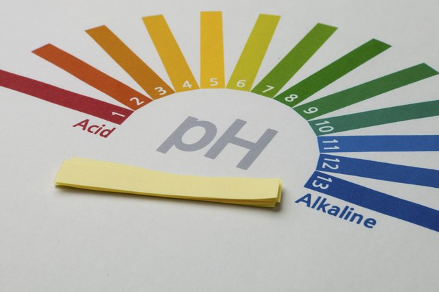 A soil pH scale ranges from 0 to 14; numbers below 7 represent acidic values, and numbers above 7 represent basic or alkaline values.
