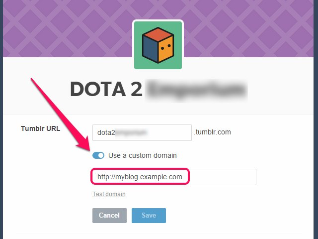 "The address field only becomes visible after clicking on ""Use a Custom Domain."""