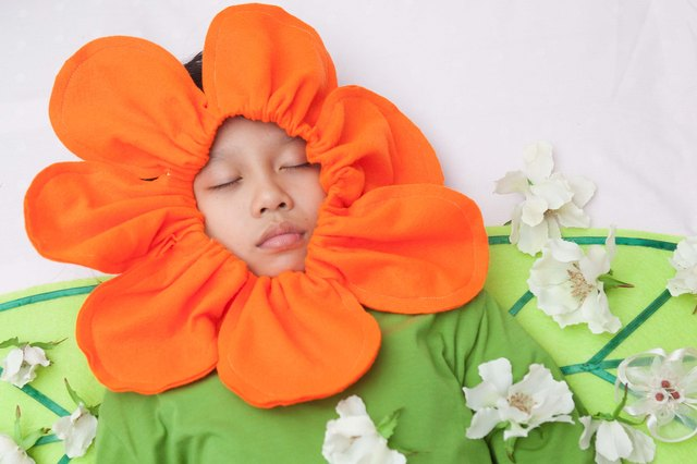how to make a flower pot halloween costume