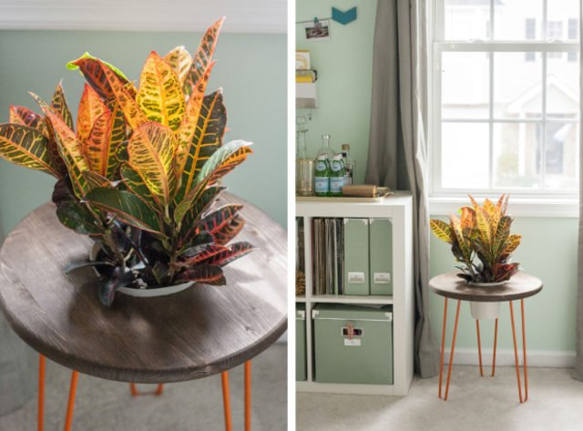 Create your own double-duty planter table with wood, hairpin leg and a plant pot.