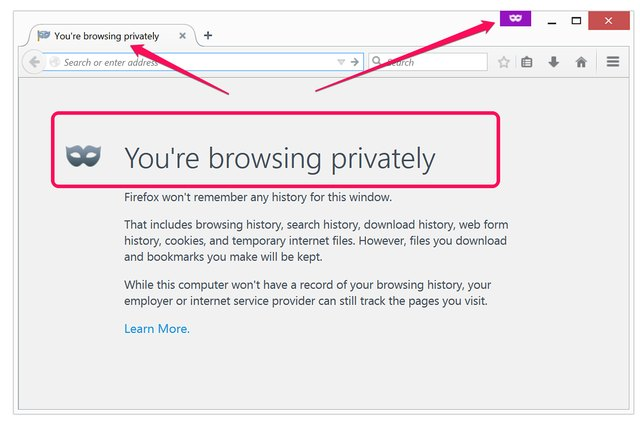 A new window in private browsing mode.
