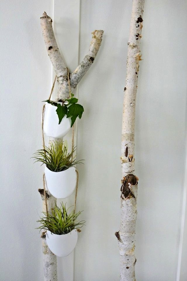 10 diy indoor gardens for the urban gardener ehow