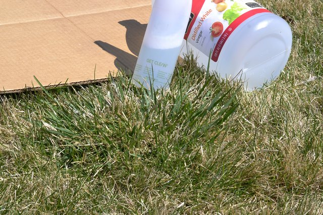 how to get rid of large crabgrass