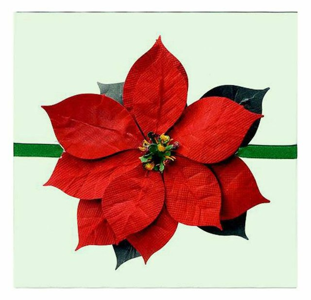 The silhouetted poinsettia bloom as a package topper.
