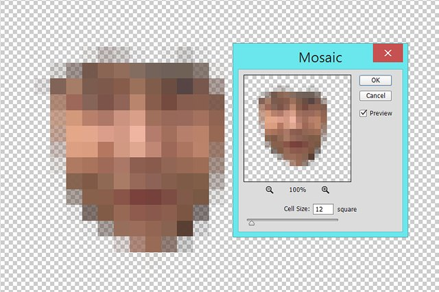 Apply the Mosaic filter to the face.