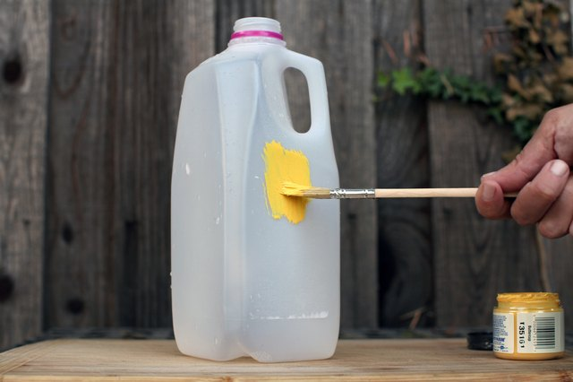 How To Kill Pantry Moths With Home Remedies With Pictures