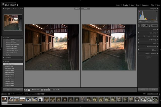 Adobe Lightroom Vs. Elements
