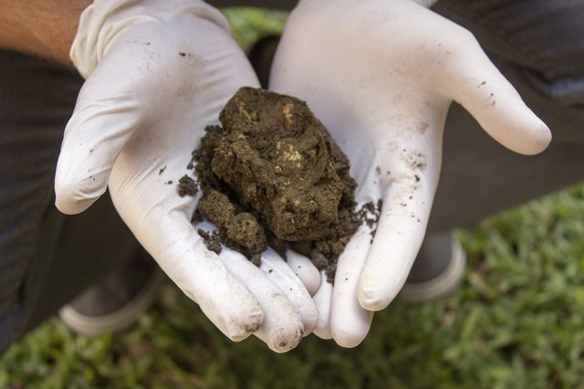 How To Use Horse Manure In A Garden With Pictures Ehow