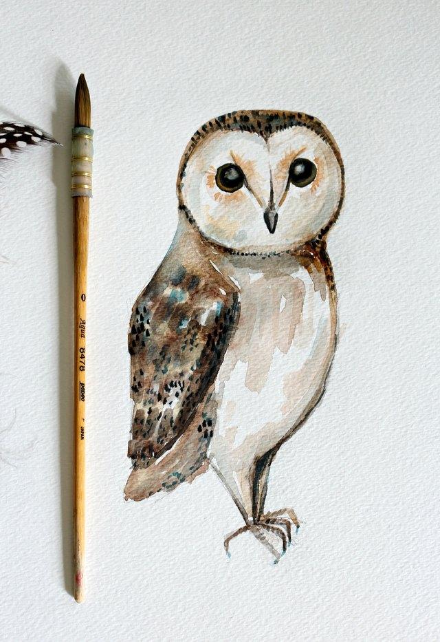 DIY Owl Watercolor Painting | eHowSimple Owl Painting