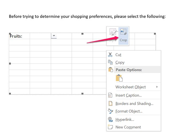 how to insert excel table as pdf into word