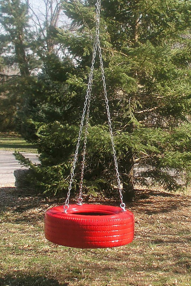 Everyone loves a tire swing.
