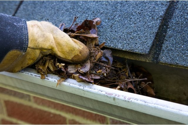 You may be surprised by the amount of debris in the gutters.