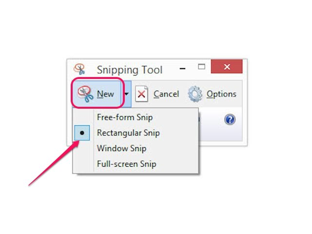 Click Options to display the Snipping Tool Options dialog box, which has a list of the tool's configurable options.