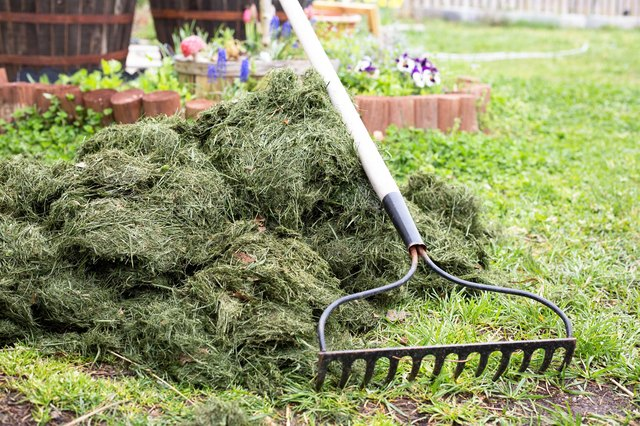 How to Use Grass Clippings to Fertilize a Garden