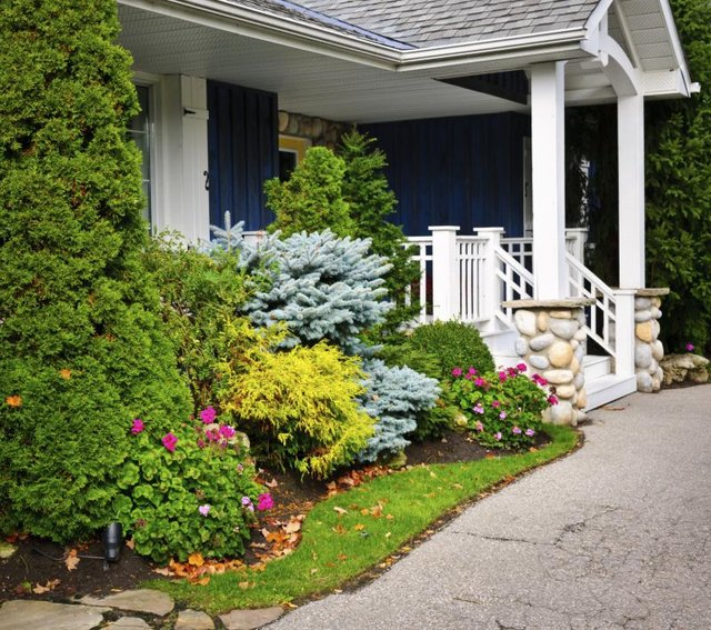 Dwarf, conical trees can accent a home's corners and features.