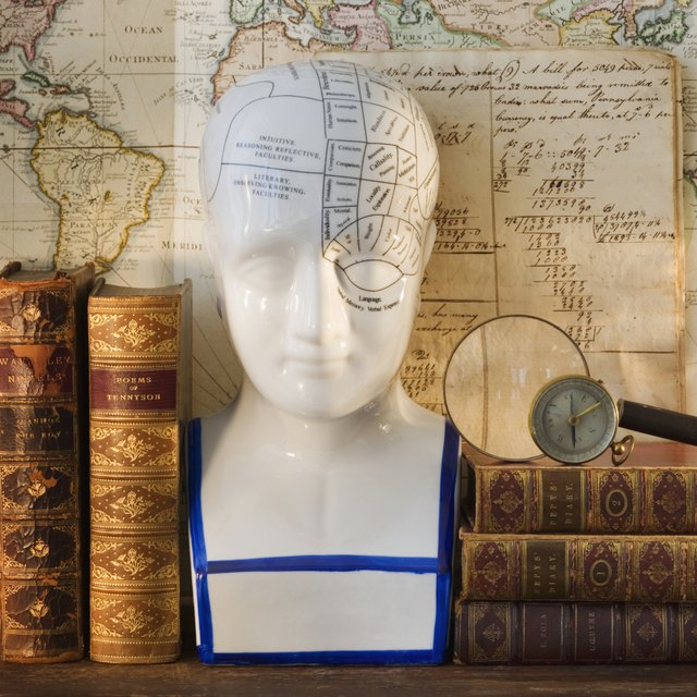 Phrenology diagram.