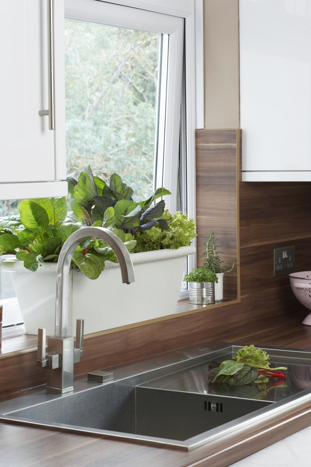 House plants bring warmth to the kitchen