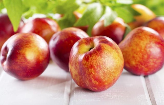 How to Preserve Nectarines (with Pictures) | eHow