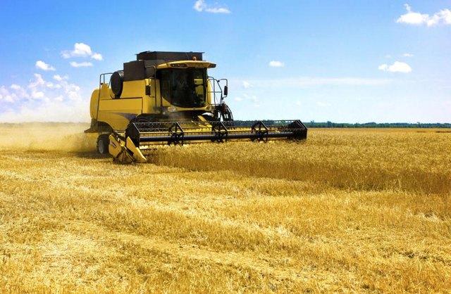 A combine is working in a barley field.