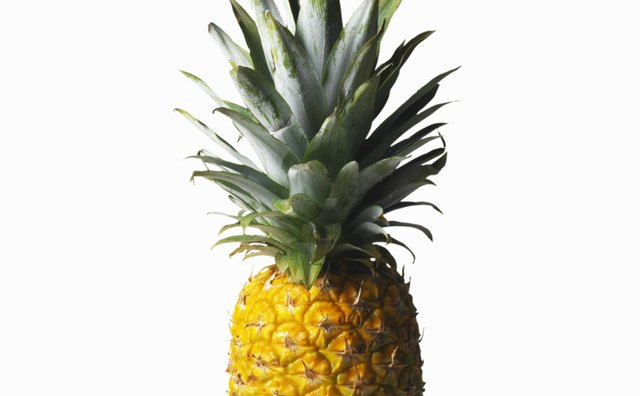 Pineapple juice has a natural enzyme that tenderizes protein.