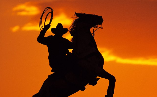 In Cormac McCarthy's Western novels, light and dark are used to elegize the past.