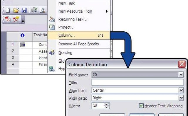 Image 3: Column Definition dialogue box