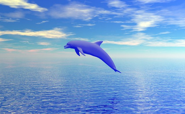 Science Daily reports that fishing activities stunt the dolphin population.