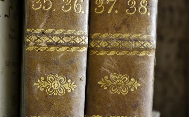 A close-up of the spines of antique books.