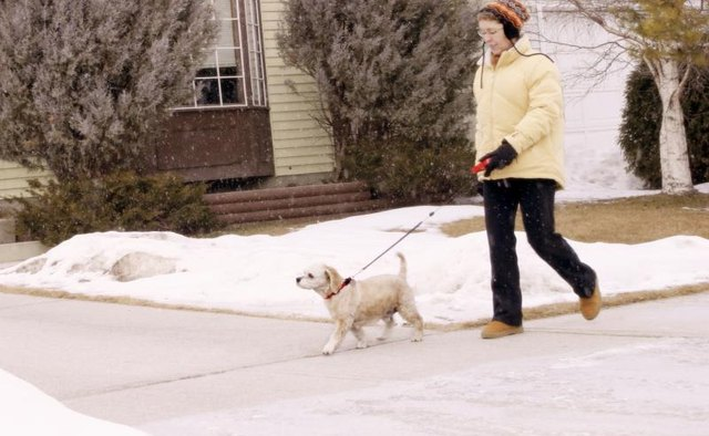 Woman taking a dog for a walk.