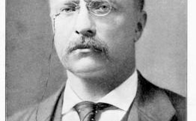 Theodore Roosevelt was appointed, then elected president, but he lost a later bid for a third term.