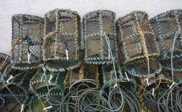 How to make a bluegill trap gone outdoors your for Diy fish trap