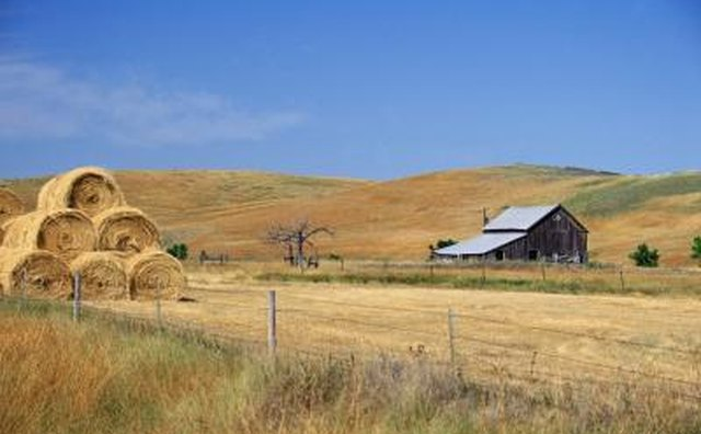 What are the six regions of the united states our for Kansas homestead act