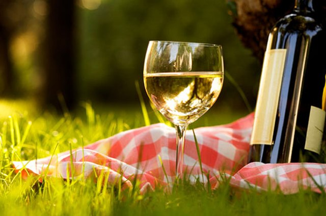 Jordan Salcito's Go-To Summer Wines