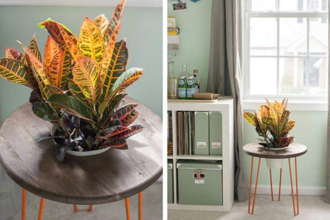 [Article Image] - Make Your Own Planter Side Table