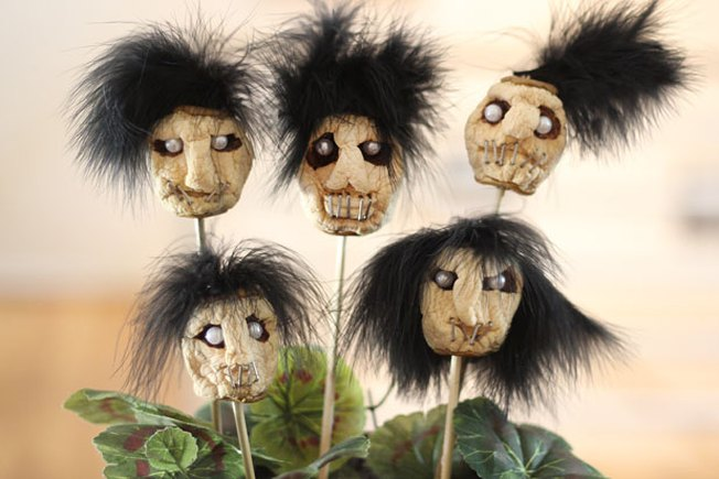 [Article Image] - Make Dried Apple Shrunken Heads