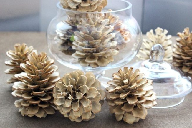 [Article Image] - How to Bleach Pine Cones