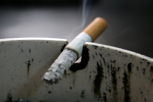[Article Image] - Science Projects on the Effects of Cigarette Smoke